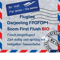 TeeGschwendner_Flugtee